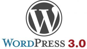 wordpress-3.0