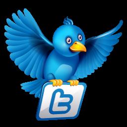 twitter lanza aplicación nativa para ipad