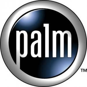 Palm-mansion