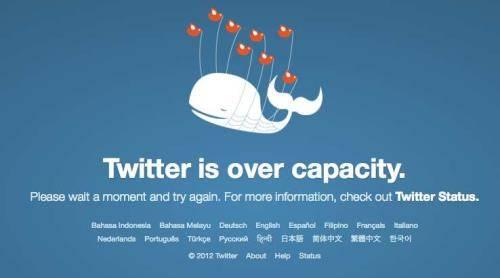 Ballena Twitter 1 (500x200)