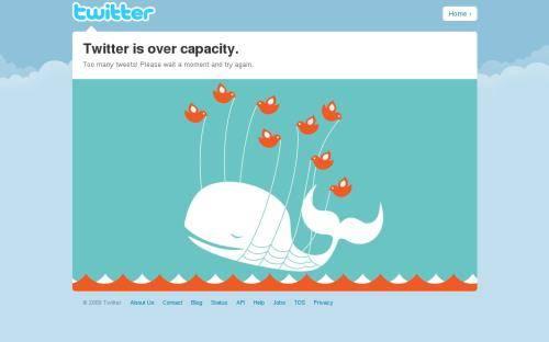 Ballena Twitter 2 (500x200)